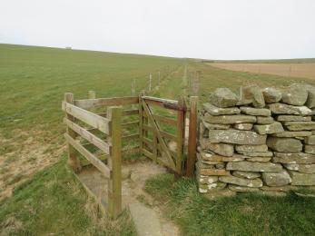 Kissing gate at southern end of path from Cumlaquoy car park to Marwick cliffs