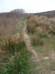 Moorland Trail surface