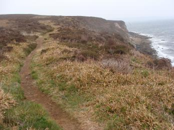 Moorland Trail on cliff top