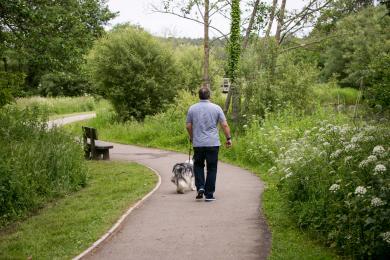 Moors Valley Lake and Riverside Walk