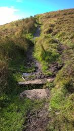 Old Man of Hoy path muddy section, stone cross drain and steps