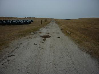 Wide sandy track, also used by vehicles