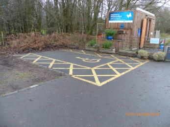 Blue badge parking space and Nature hub