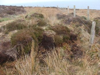 Peat bank step on the Moorland Trail