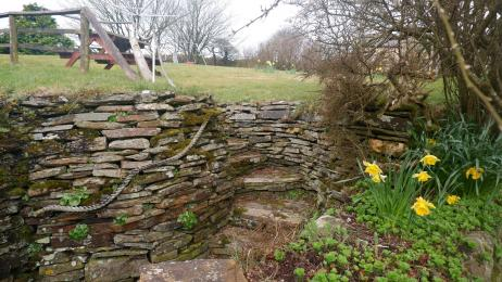 Stone steps to access Polrunny Farm's 'farm garden' - a wide expanse of gently sloping grass with children's play equipment.