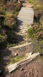 Post Road wooden boardwalk and steps