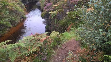 Post Road path adjacent to drop into stream