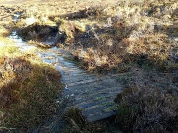 Post Road water lying on boardwalk