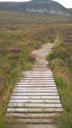 Post Road wooden boardwalk
