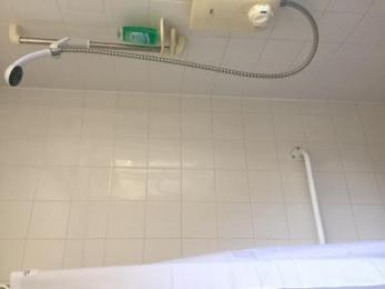 Accessible shower with hand rail