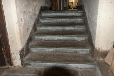 Photo of steps from low lighting basement to low lighting kitchen level