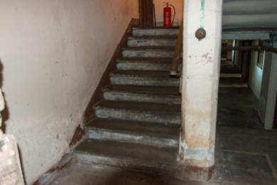 Photo of steps from low lighting kitchen level to ground floor level
