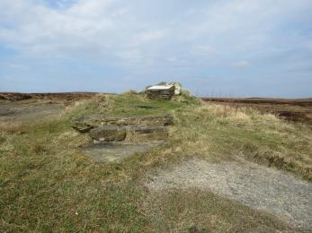 Steps up to Birsay Moors View Point Interpretation