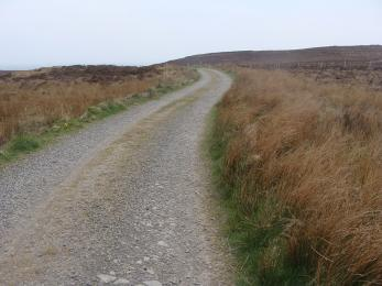 Surfaced section of Moorland Trail