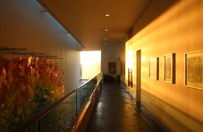Top floor corridor of The Lightbox as the Sun shines in through the window