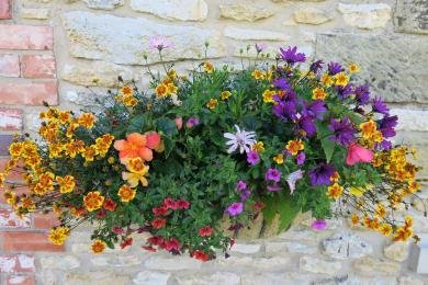 Flower baskets and a flower bed brighten up your patio.