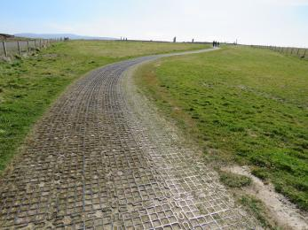 Surface of trail for part of the way between road and Ring of Brodgar