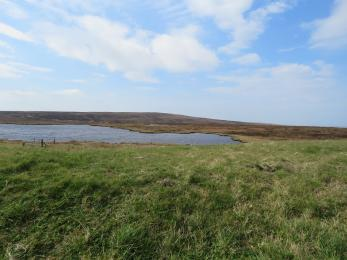 View from Birsay Moors Hide