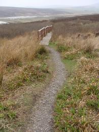 Trail surface and boardwalk on Waulkmill Bay North Trail