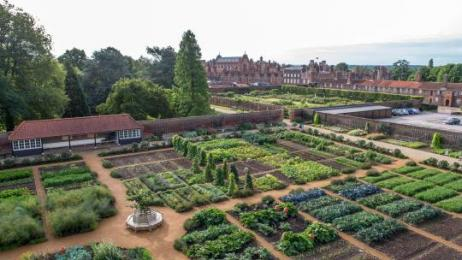 The Kitchen Garden, looking towards the palace
