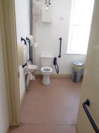 Accessible toilet showing grab rails