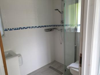 Downstairs en-suite walk-in shower, toilet and basin, showing access from bedroom