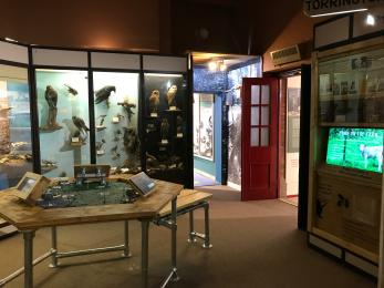 Photo of Biosphere Gallery