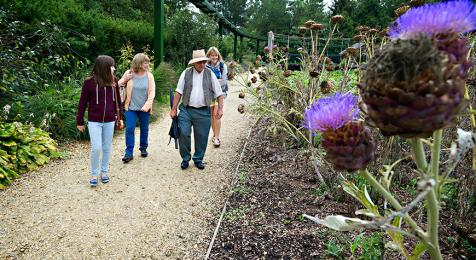 Gravel pathways in Victorian Gardens