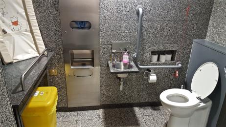 A photograph of the accessible toilet on the first floor.