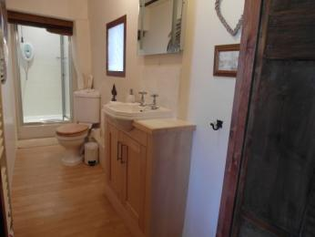 downstairs bathroom with walk in shower