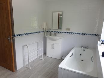 family bathroom showing full sized bath