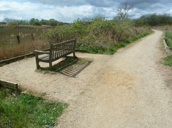 Sandy Wall- path to riverbank