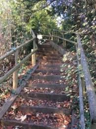 Motte Steps