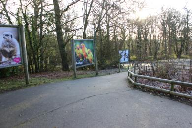 Path from car park