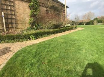 lawn and herbaceous border