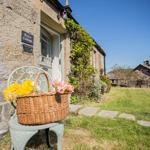Percy Cottage garden