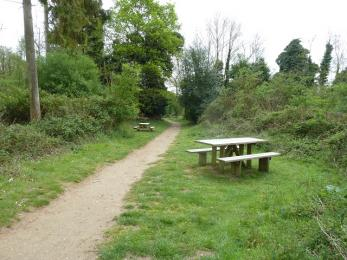 Other picnic benches along trails near to Reception Hide