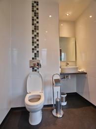 Onyx Bathroom Wetrooom toilet and sink