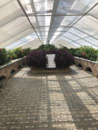 Inside Butterfly House