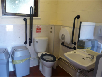 access toilet