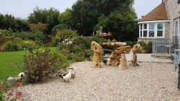 farmhouse, B&B, patio, garden