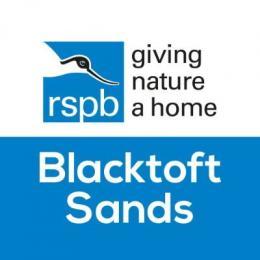 RSPB Blacktoft Sands