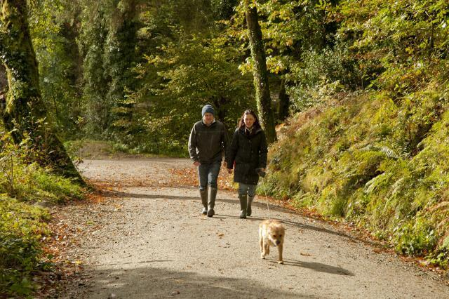 A man and woman walking towards the camera, a small dog is in the foreground