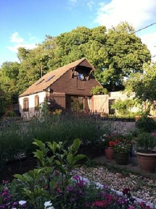 External view of Darwin Cottage situated in the corner of a courtyard with lavender, sunflowers and plants in pots