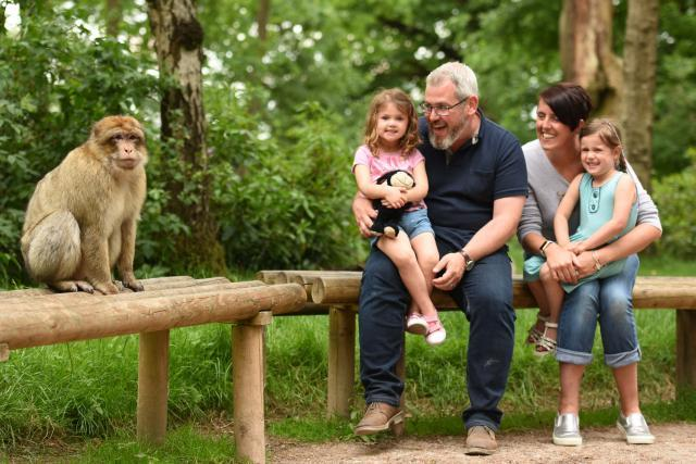 Family trip to Monkey Forest
