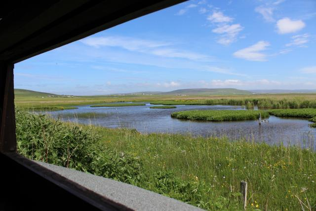 View from the Loons hide by Christine Hall