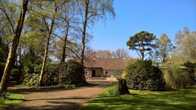Birchcroft - hideaway set in over an acre of woodlands