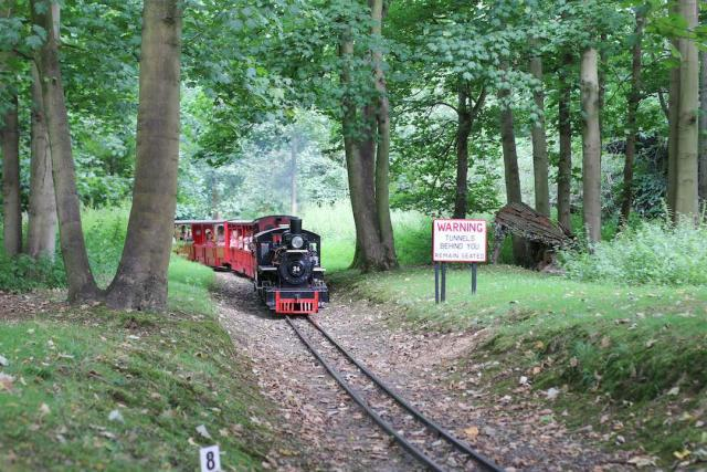 Our Steam Engines travelling through the Estate Woodland